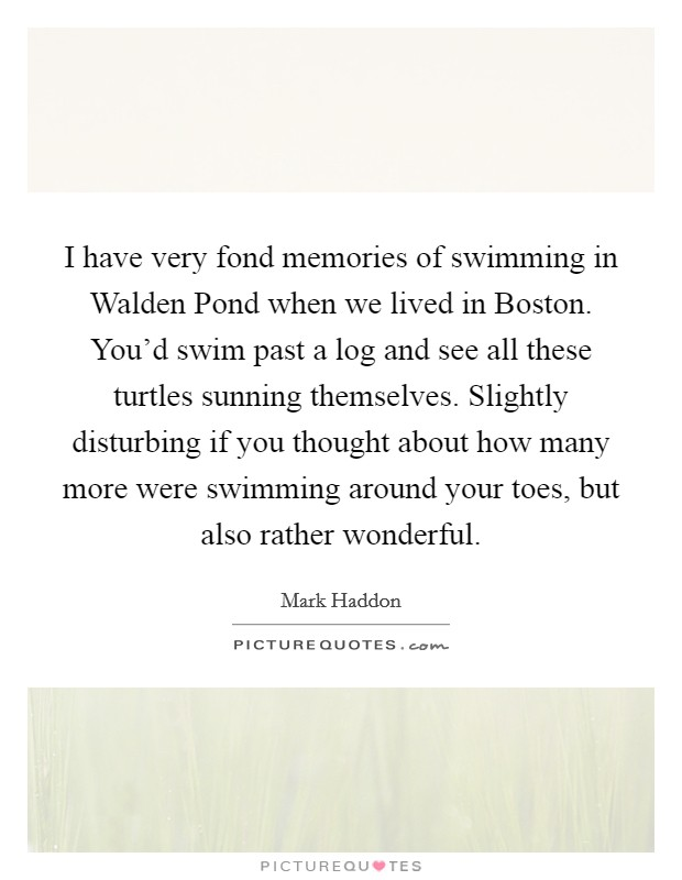 I have very fond memories of swimming in Walden Pond when we lived in Boston. You'd swim past a log and see all these turtles sunning themselves. Slightly disturbing if you thought about how many more were swimming around your toes, but also rather wonderful Picture Quote #1