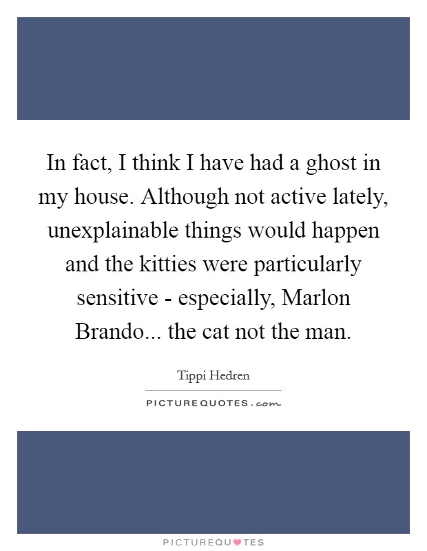In fact, I think I have had a ghost in my house. Although not active lately, unexplainable things would happen and the kitties were particularly sensitive - especially, Marlon Brando... the cat not the man Picture Quote #1