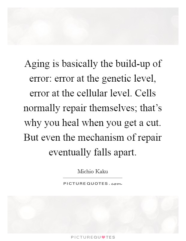 Aging is basically the build-up of error: error at the genetic level, error at the cellular level. Cells normally repair themselves; that's why you heal when you get a cut. But even the mechanism of repair eventually falls apart Picture Quote #1