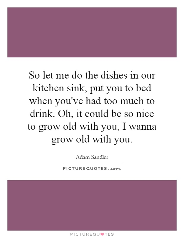 Kitchen Sink Quotes Sayings Kitchen Sink Picture Quotes