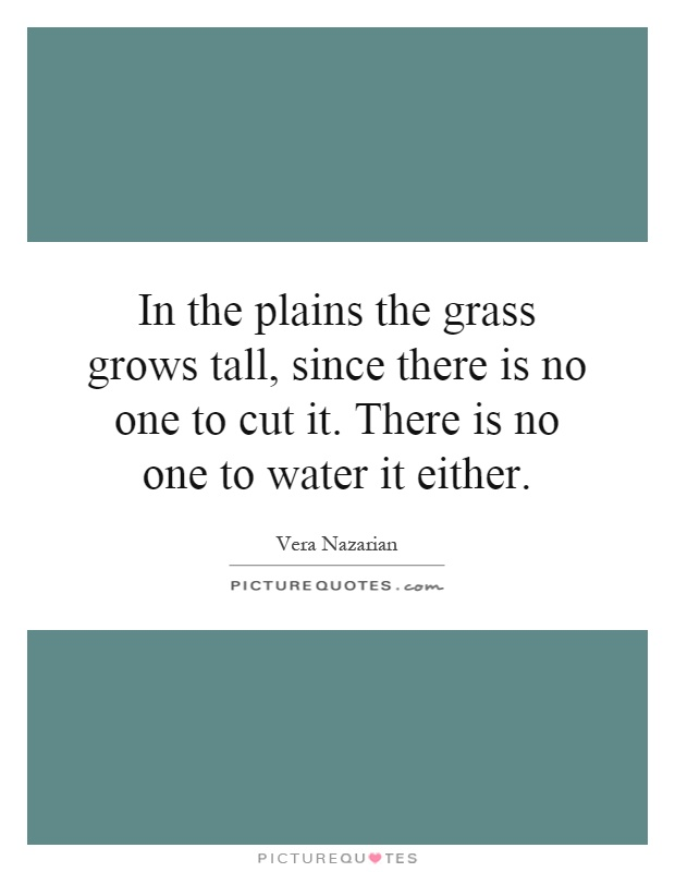 In the plains the grass grows tall, since there is no one to cut it. There is no one to water it either Picture Quote #1