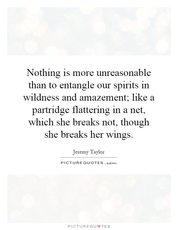 Nothing is more unreasonable than to entangle our spirits in wildness and amazement; like a partridge flattering in a net, which she breaks not, though she breaks her wings Picture Quote #1
