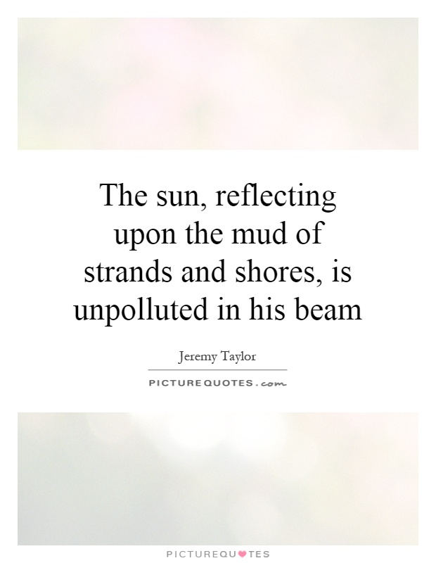 The sun, reflecting upon the mud of strands and shores, is unpolluted in his beam Picture Quote #1