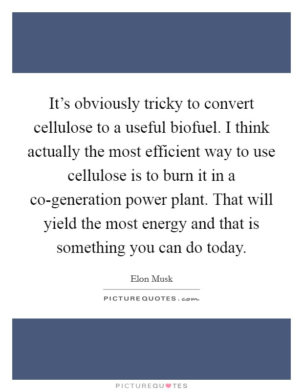 It's obviously tricky to convert cellulose to a useful biofuel. I think actually the most efficient way to use cellulose is to burn it in a co-generation power plant. That will yield the most energy and that is something you can do today Picture Quote #1