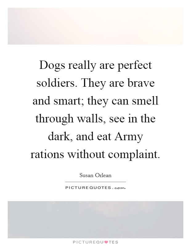 Dogs really are perfect soldiers. They are brave and smart; they can smell through walls, see in the dark, and eat Army rations without complaint Picture Quote #1