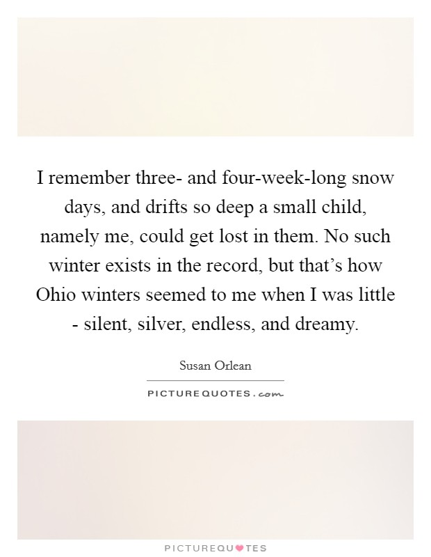 I remember three- and four-week-long snow days, and drifts so deep a small child, namely me, could get lost in them. No such winter exists in the record, but that's how Ohio winters seemed to me when I was little - silent, silver, endless, and dreamy Picture Quote #1