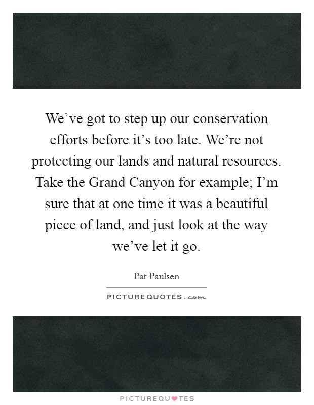 We've got to step up our conservation efforts before it's too late. We're not protecting our lands and natural resources. Take the Grand Canyon for example; I'm sure that at one time it was a beautiful piece of land, and just look at the way we've let it go Picture Quote #1