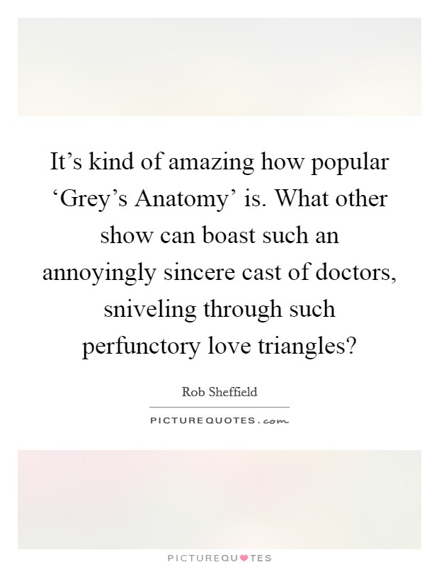 It's kind of amazing how popular 'Grey's Anatomy' is. What other show can boast such an annoyingly sincere cast of doctors, sniveling through such perfunctory love triangles? Picture Quote #1