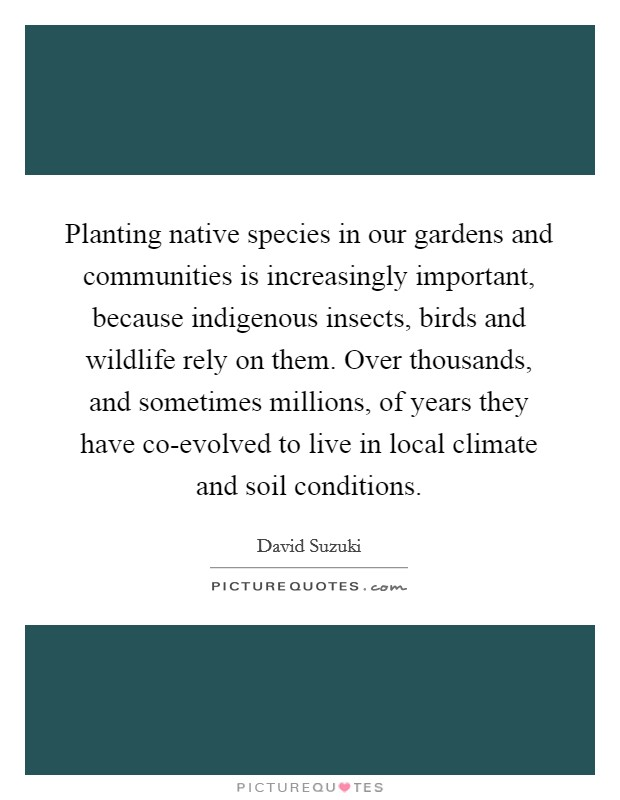 Planting native species in our gardens and communities is increasingly important, because indigenous insects, birds and wildlife rely on them. Over thousands, and sometimes millions, of years they have co-evolved to live in local climate and soil conditions Picture Quote #1