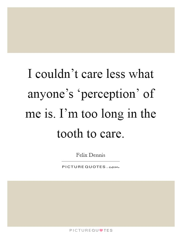 I couldn't care less what anyone's 'perception' of me is. I'm too long in the tooth to care Picture Quote #1