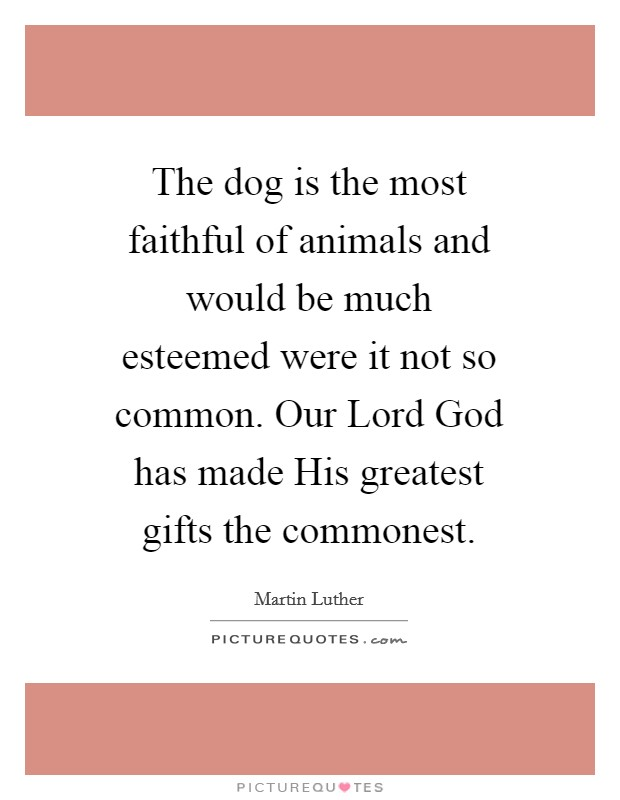 The dog is the most faithful of animals and would be much esteemed were it not so common. Our Lord God has made His greatest gifts the commonest Picture Quote #1