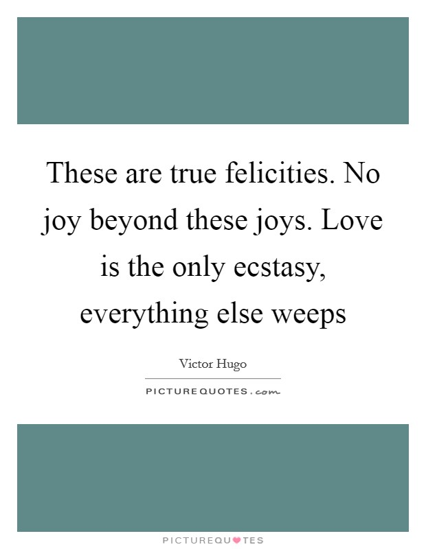 These are true felicities. No joy beyond these joys. Love is the only ecstasy, everything else weeps Picture Quote #1