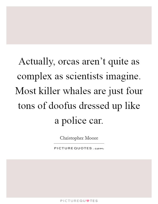 Actually, orcas aren't quite as complex as scientists imagine. Most killer whales are just four tons of doofus dressed up like a police car Picture Quote #1