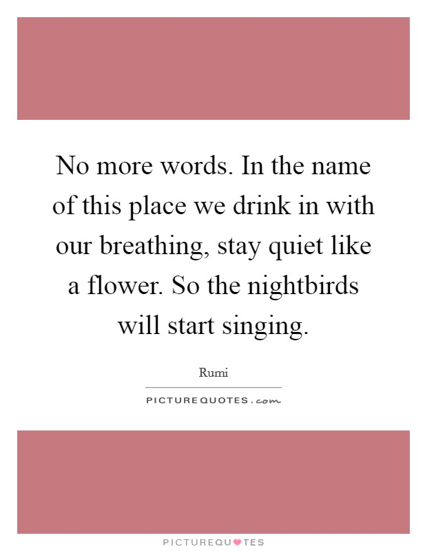 No more words. In the name of this place we drink in with our breathing, stay quiet like a flower. So the nightbirds will start singing Picture Quote #1