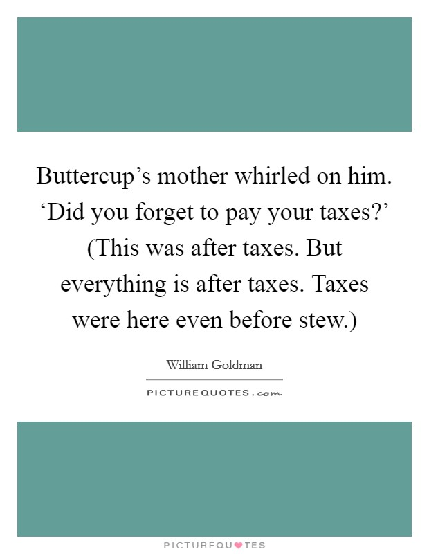 Buttercup's mother whirled on him. 'Did you forget to pay your taxes?' (This was after taxes. But everything is after taxes. Taxes were here even before stew.) Picture Quote #1