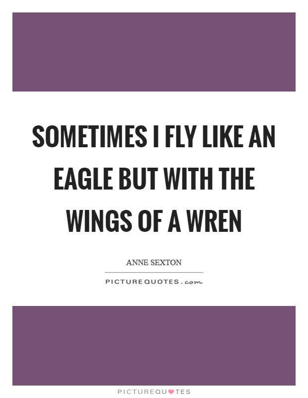 Sometimes I fly like an eagle but with the wings of a wren Picture Quote #1