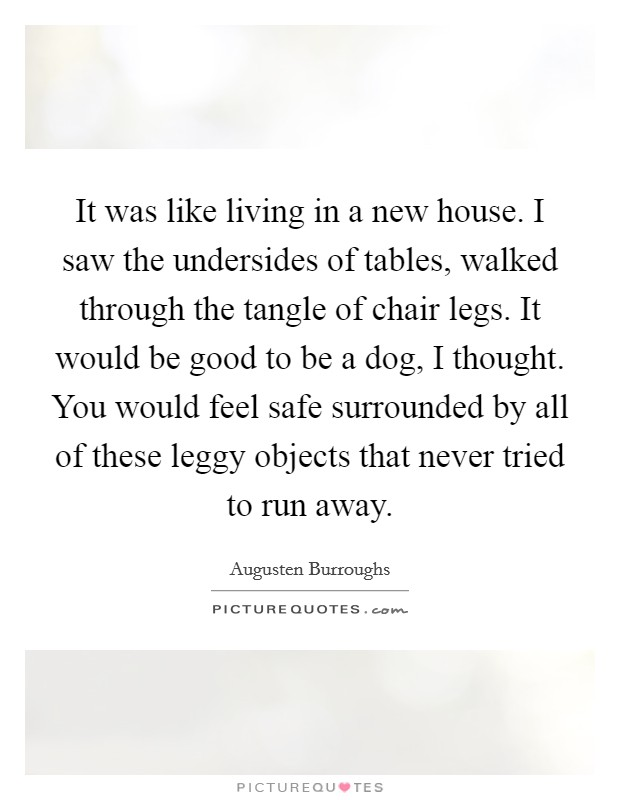 It was like living in a new house. I saw the undersides of tables, walked through the tangle of chair legs. It would be good to be a dog, I thought. You would feel safe surrounded by all of these leggy objects that never tried to run away Picture Quote #1