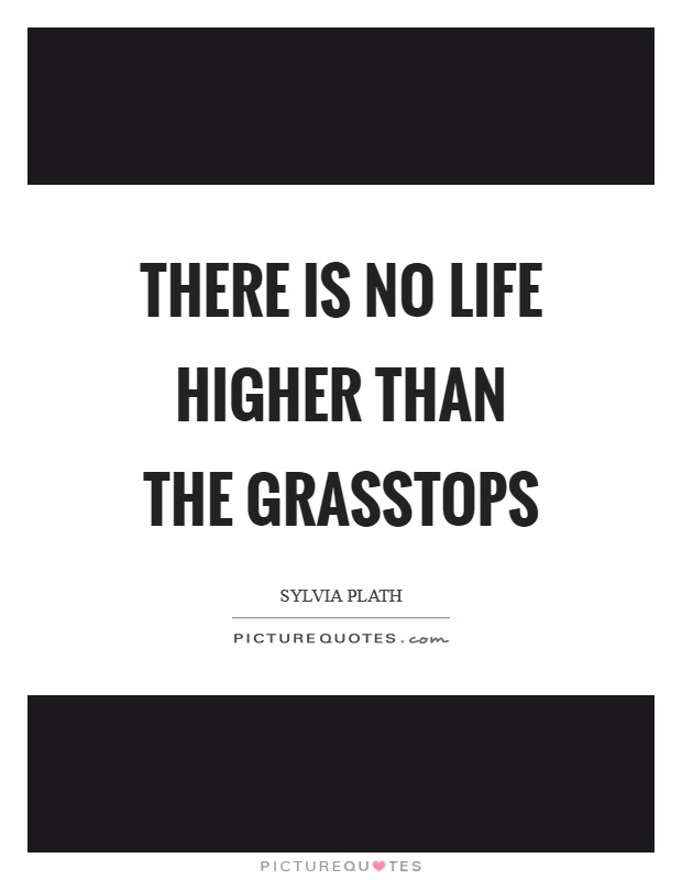 There is no life higher than the grasstops Picture Quote #1