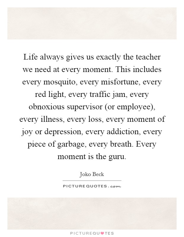 Life always gives us exactly the teacher we need at every moment. This includes every mosquito, every misfortune, every red light, every traffic jam, every obnoxious supervisor (or employee), every illness, every loss, every moment of joy or depression, every addiction, every piece of garbage, every breath. Every moment is the guru Picture Quote #1