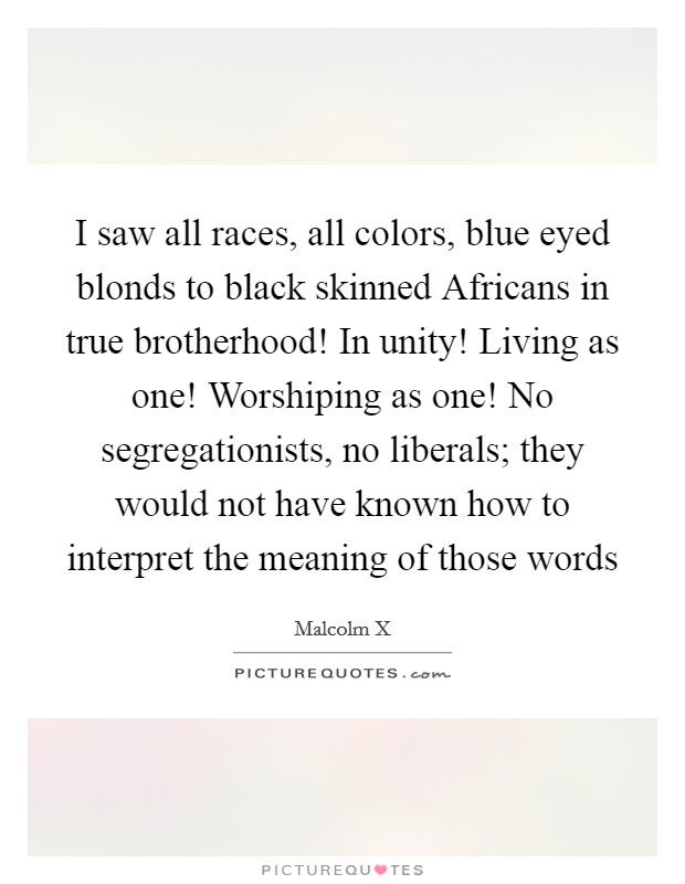 I saw all races, all colors, blue eyed blonds to black skinned Africans in true brotherhood! In unity! Living as one! Worshiping as one! No segregationists, no liberals; they would not have known how to interpret the meaning of those words Picture Quote #1