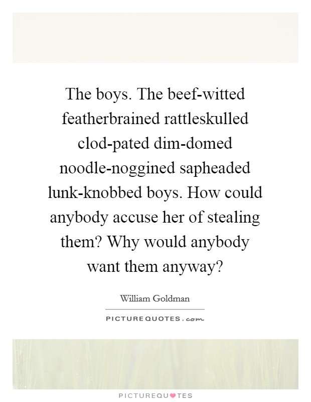 The boys. The beef-witted featherbrained rattleskulled clod-pated dim-domed noodle-noggined sapheaded lunk-knobbed boys. How could anybody accuse her of stealing them? Why would anybody want them anyway? Picture Quote #1