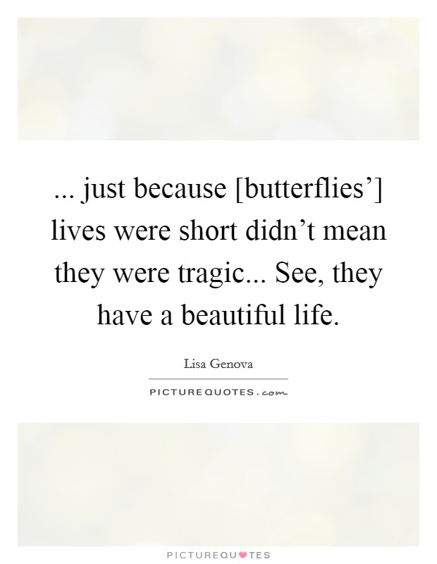 just because butterflies lives were short didnt mean they were tragic see they have a beautiful life