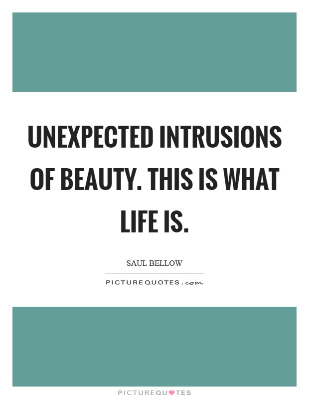 Unexpected intrusions of beauty. This is what life is Picture Quote #1
