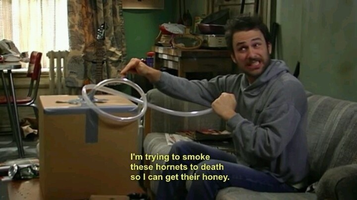 Always Sunny Charlie Kelly Quote   Quote Number 758022 ...