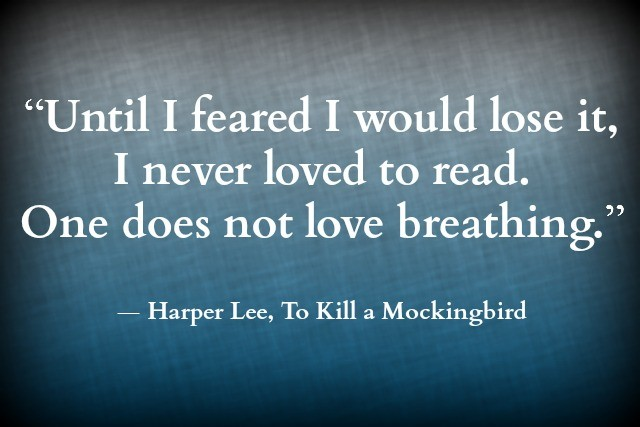 quotes for chapter 14 of to kill a mockingbird Quotes on justice / injustice in to kill a mockingbird atticus and justice do all lawyers defend n-negroes, atticus atticus sighed i'm simply defending a negro - his name's tom robinson.