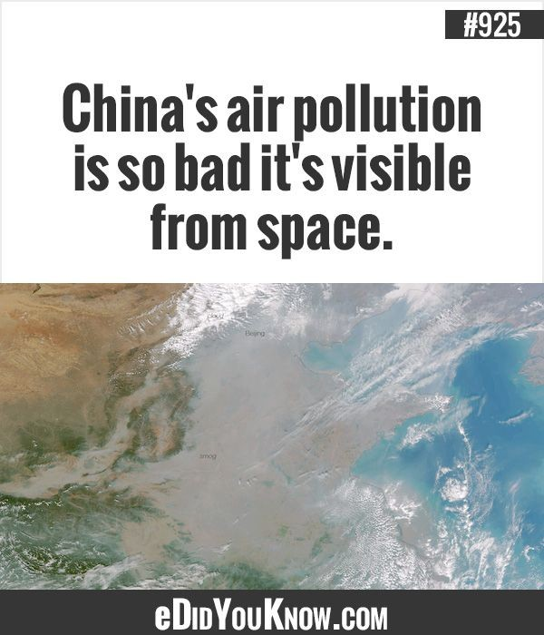 Air Pollution Quote 1 Picture Quote #1