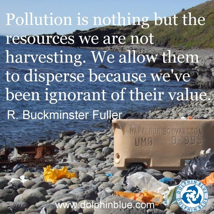 Environment Pollution Quote 1 Picture Quote #1