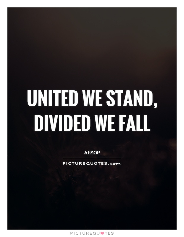 United we stand, divided we fall Picture Quote #1