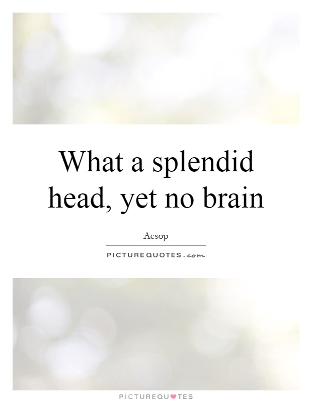 What a splendid head, yet no brain Picture Quote #1