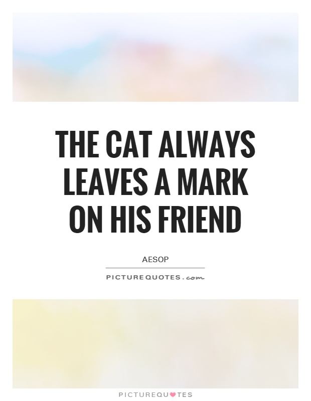 The cat always leaves a mark on his friend Picture Quote #1