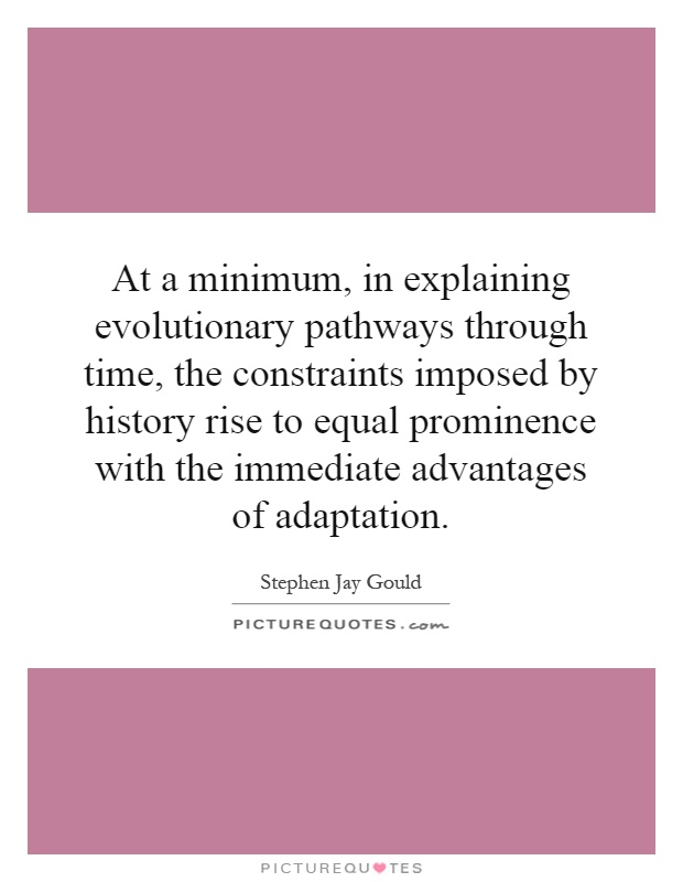 At a minimum, in explaining evolutionary pathways through time, the constraints imposed by history rise to equal prominence with the immediate advantages of adaptation Picture Quote #1