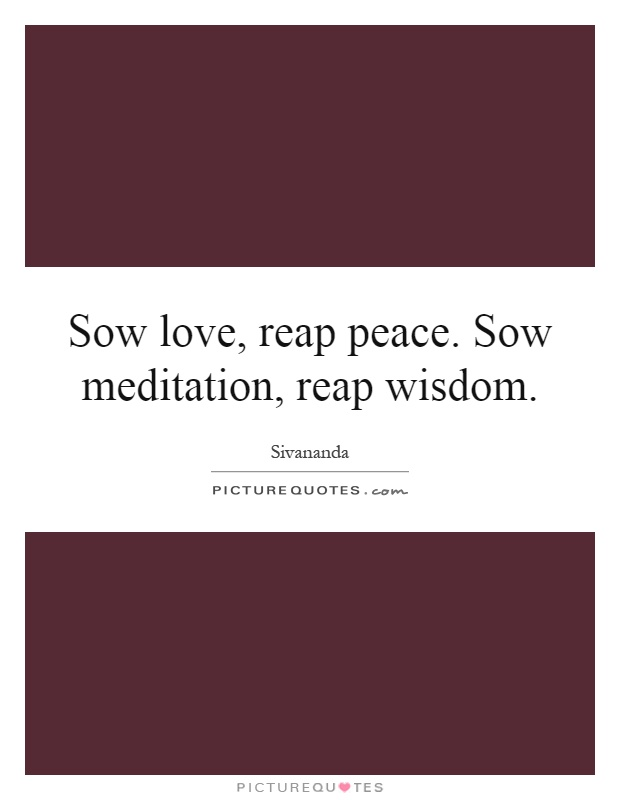 Sow love, reap peace. Sow meditation, reap wisdom Picture Quote #1