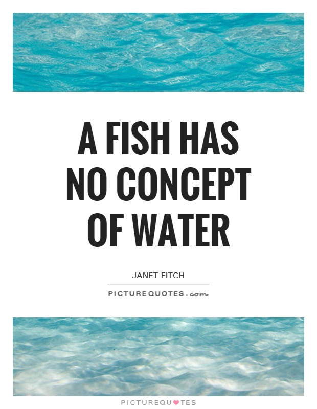 A fish has no concept of water Picture Quote #1