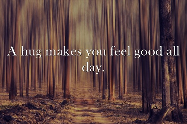 Hug Day Quote 6 Picture Quote #1