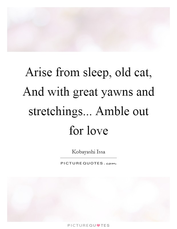 Arise from sleep, old cat, And with great yawns and stretchings... Amble out for love Picture Quote #1