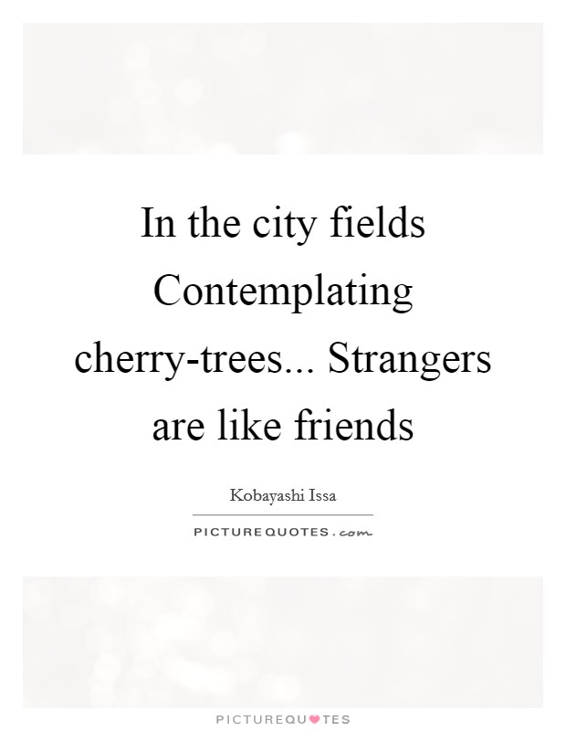 In the city fields Contemplating cherry-trees... Strangers are like friends Picture Quote #1