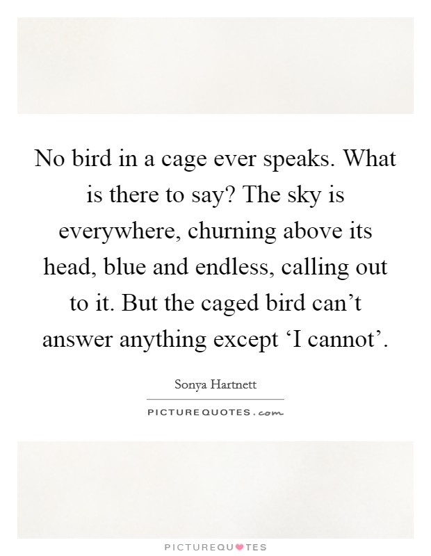 No bird in a cage ever speaks. What is there to say? The sky is everywhere, churning above its head, blue and endless, calling out to it. But the caged bird can't answer anything except 'I cannot' Picture Quote #1