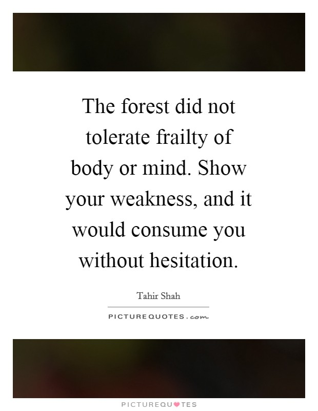 The forest did not tolerate frailty of body or mind. Show your weakness, and it would consume you without hesitation Picture Quote #1