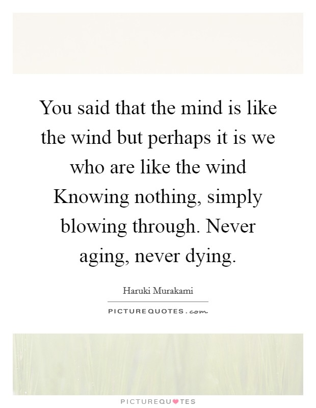 You said that the mind is like the wind but perhaps it is we who are like the wind Knowing nothing, simply blowing through. Never aging, never dying Picture Quote #1