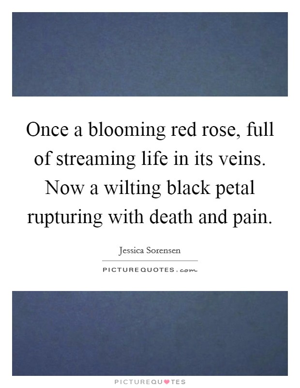 Once a blooming red rose, full of streaming life in its veins. Now a wilting black petal rupturing with death and pain Picture Quote #1