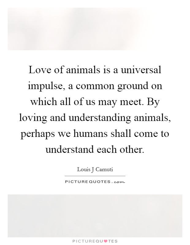 Love of animals is a universal impulse, a common ground on which all of us may meet. By loving and understanding animals, perhaps we humans shall come to understand each other Picture Quote #1