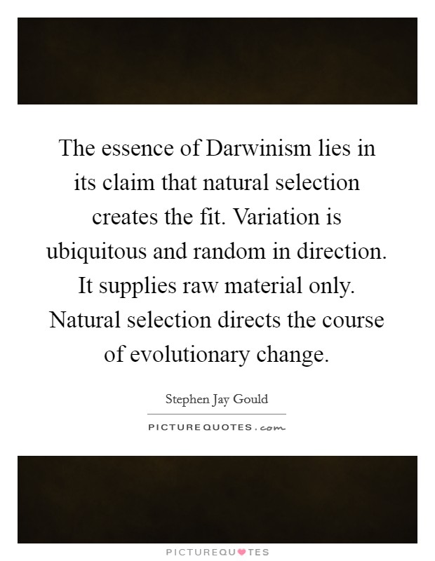 The essence of Darwinism lies in its claim that natural selection creates the fit. Variation is ubiquitous and random in direction. It supplies raw material only. Natural selection directs the course of evolutionary change Picture Quote #1