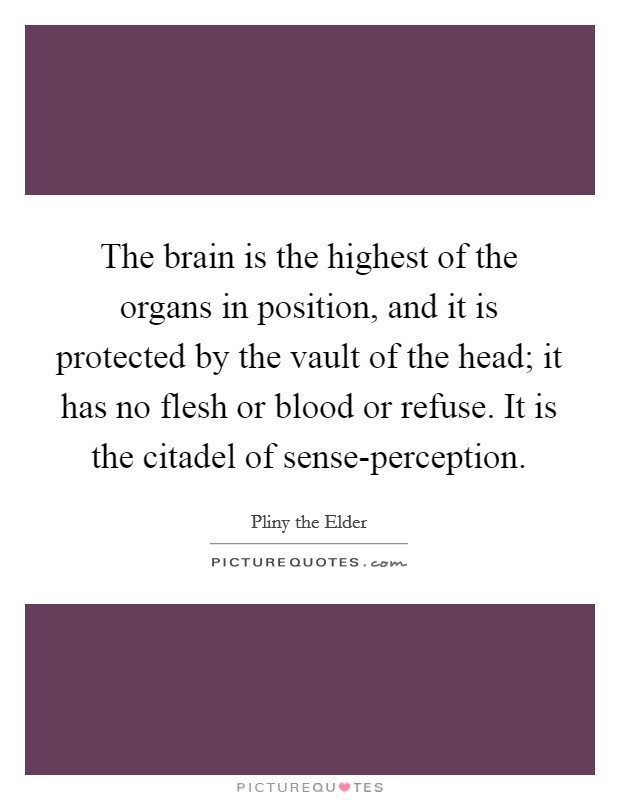 The brain is the highest of the organs in position, and it is protected by the vault of the head; it has no flesh or blood or refuse. It is the citadel of sense-perception Picture Quote #1