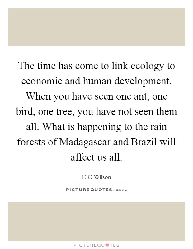 The time has come to link ecology to economic and human development. When you have seen one ant, one bird, one tree, you have not seen them all. What is happening to the rain forests of Madagascar and Brazil will affect us all Picture Quote #1
