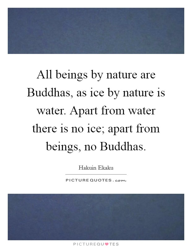 All beings by nature are Buddhas, as ice by nature is water. Apart from water there is no ice; apart from beings, no Buddhas Picture Quote #1