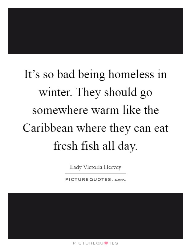 It's so bad being homeless in winter. They should go somewhere warm like the Caribbean where they can eat fresh fish all day Picture Quote #1